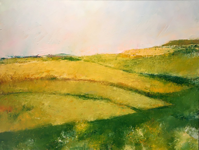 Flint Hills Patterns 2  16x20  oc  $800 fr