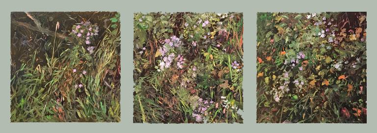 Asters 17.5x47 op triptych $2,000 fr