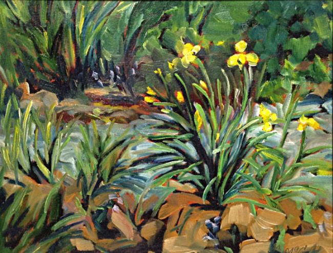 Iris Garden 11x14 oc $475 fr