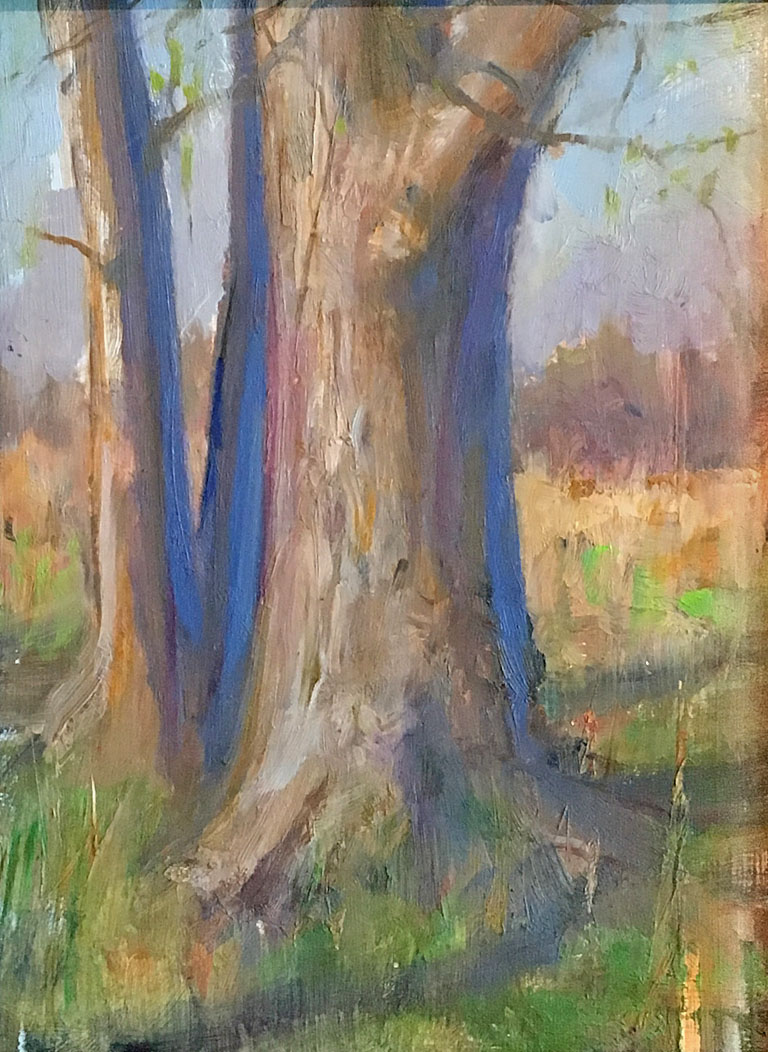 Tree Study 8x6 op $350 fr