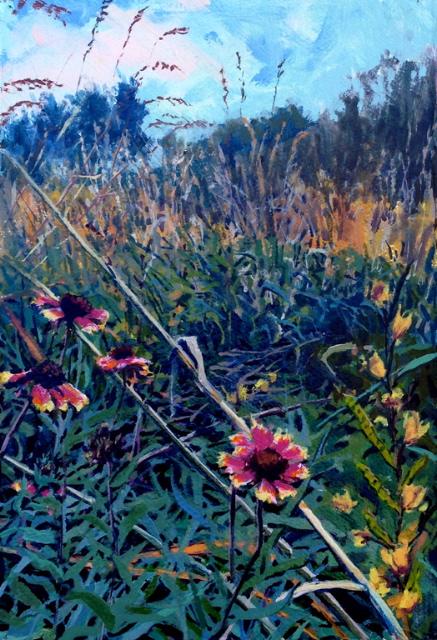 Diana Werts Blanket Flower (Indian Blanket) 7.5x11 op $450