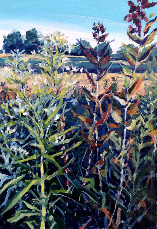 Diana Werts Land Institute Distant Shadows 7.5X11 op $450