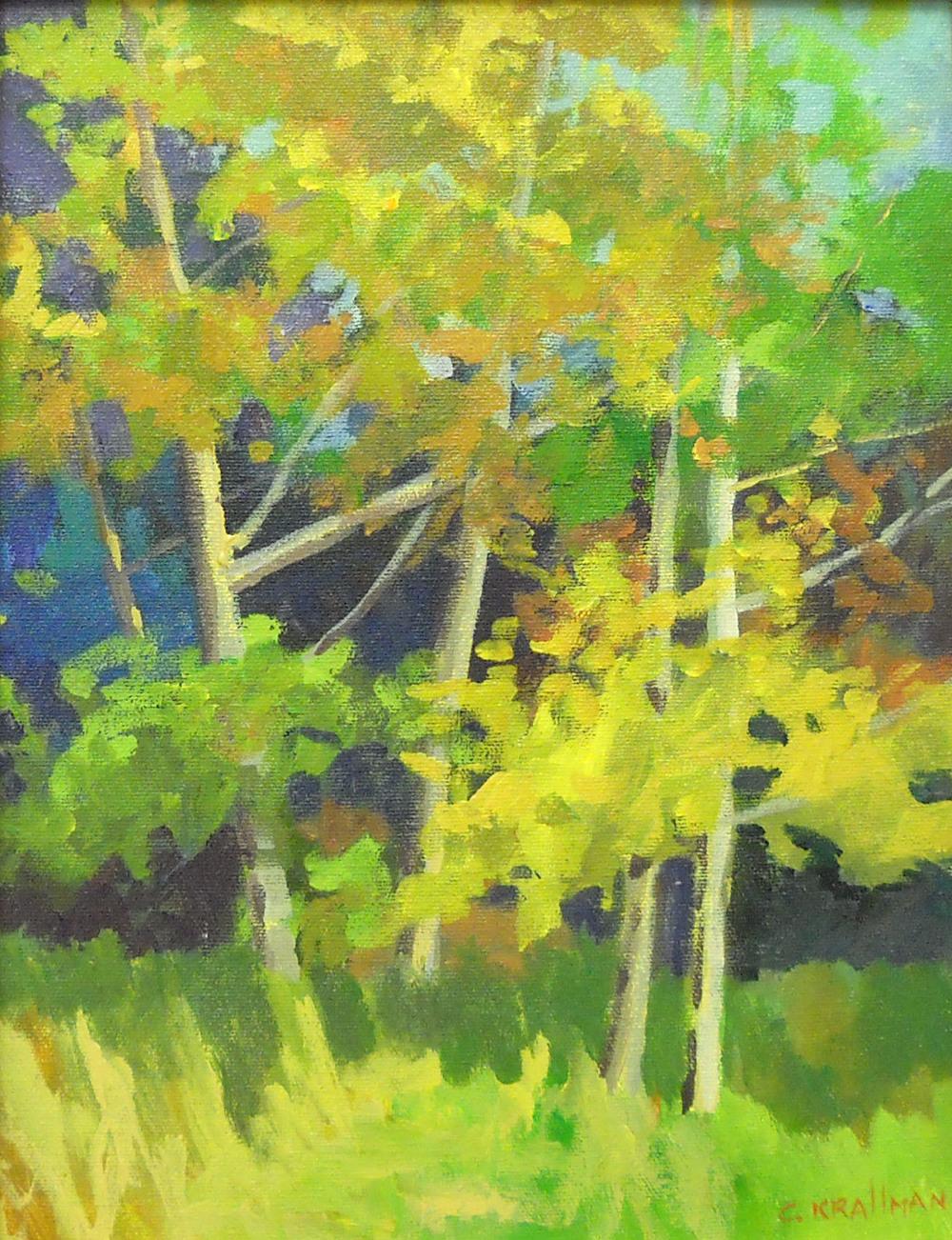 Cally Krallman River Birch 11x4 ac $650 uf