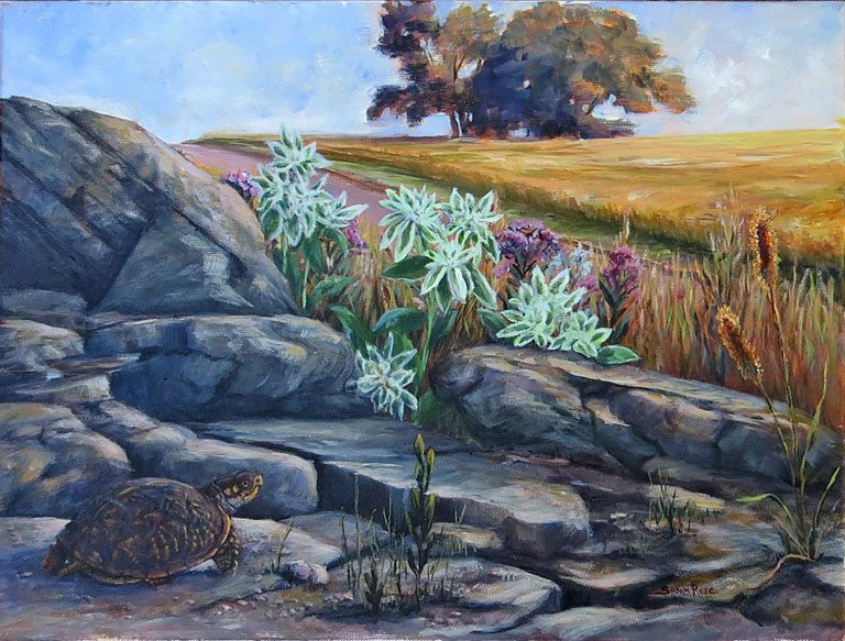 Susan Rose Protective Shell  12x16 oc $450