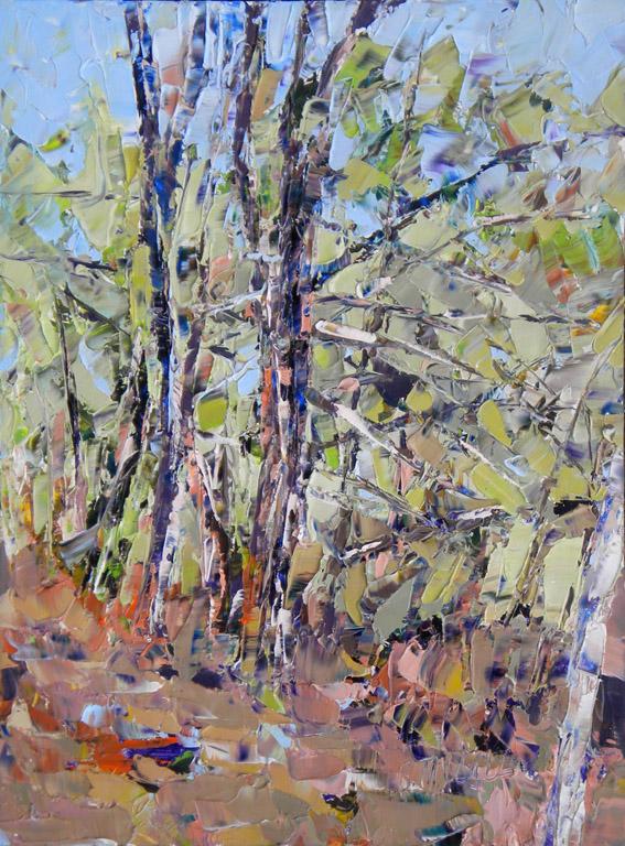 Early Spring Colors  24x20  oc  $1,000