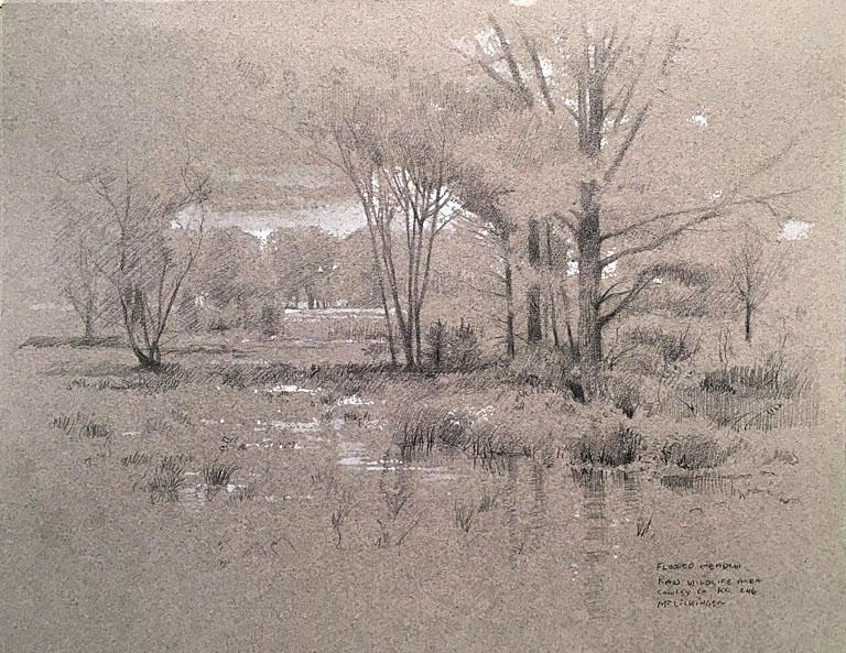 Flooded Meadow, Kaw Wildlife Area 8.5x11 mm $730