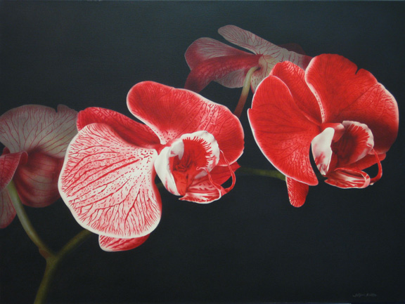John Kuhn Red Orchid  30x40 acrylic on canvas $3,600