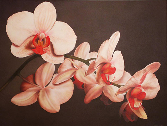 White Orchid 32x42 acrylic on canvas $3,600