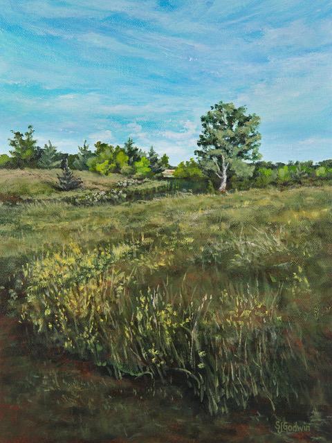 Morning Meadow 9x12 ap $395 fr