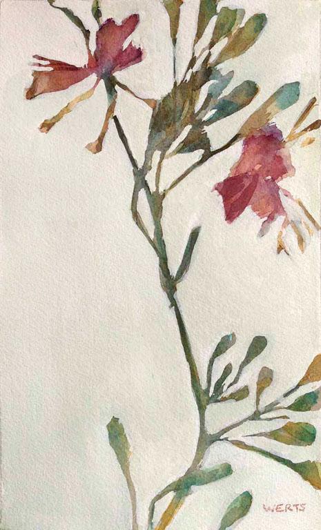 Pressed Flowers #3 10x6 wc $250 uf $345 fr