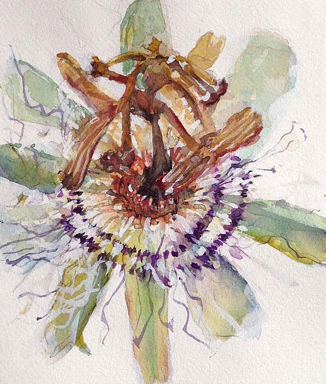 Pressed Flowers #6 10x6 wc $250 uf $330 fr