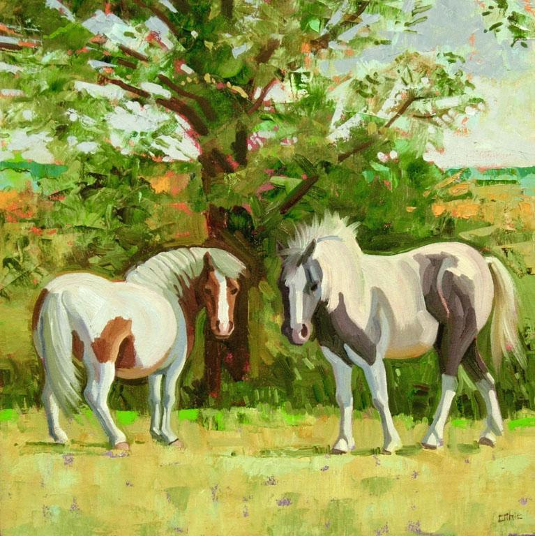 Two Shetlands, Shade Tree 16x16 oil $450