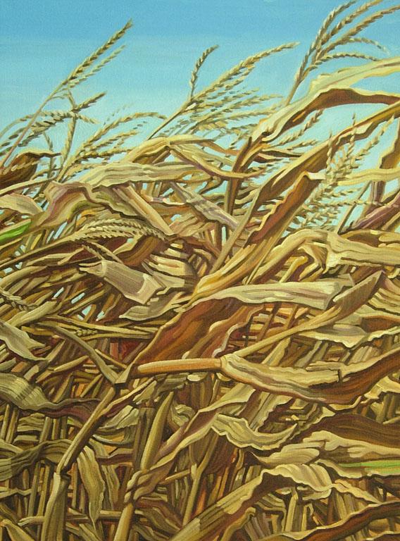 Wind in the Corn 26x22 oil $600 fr