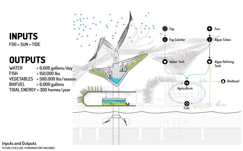 tedx-presentation-8_6_12-p1445-1.jpg