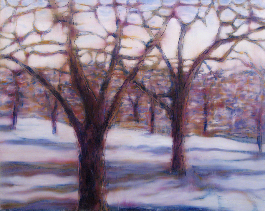 niagara fruit trees in winter