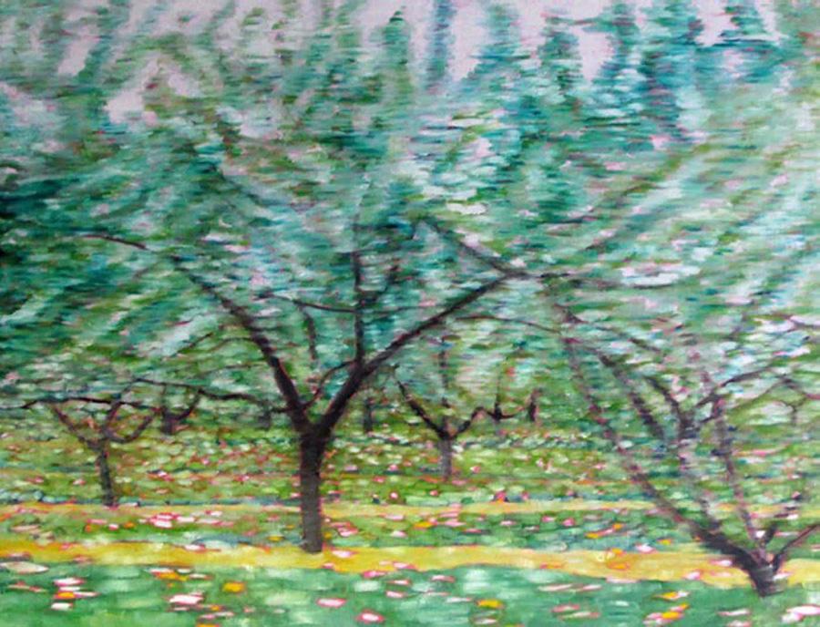dazzling fruit trees