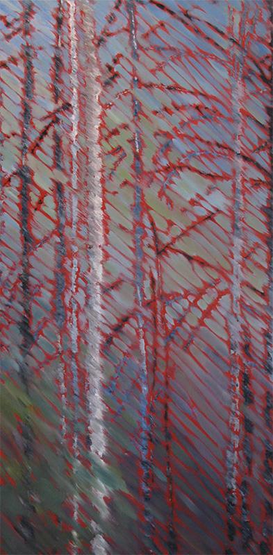 long birch
