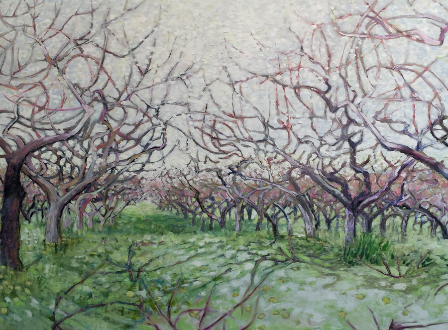 dappled orchard