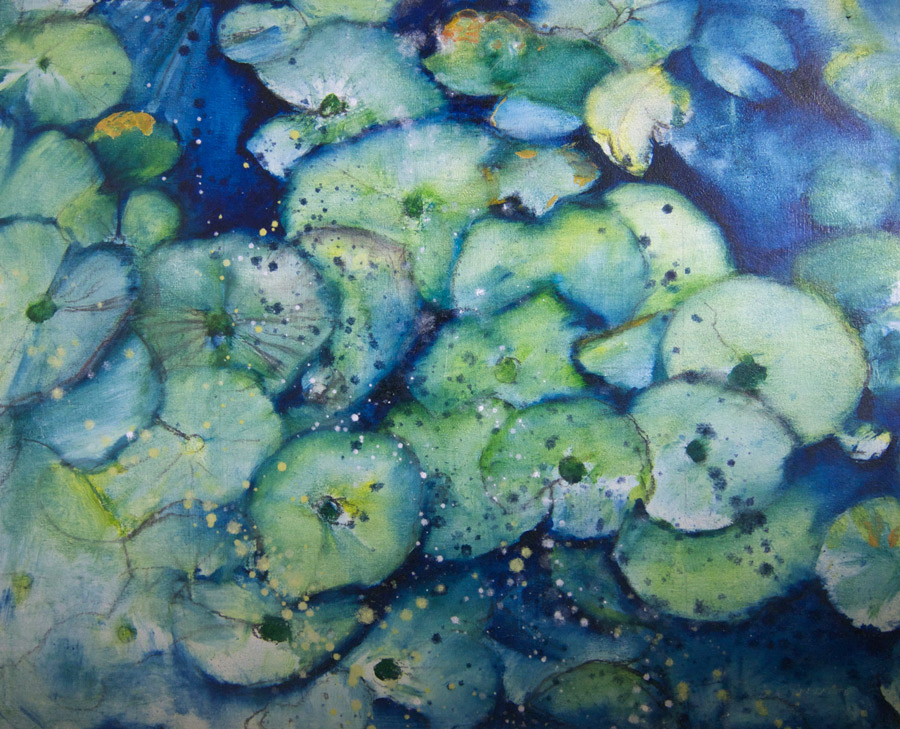 watery lilies
