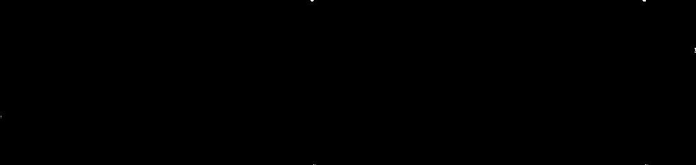 dw-logo.png