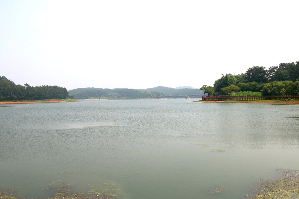 Eunpa Lake... huge lake near Gunsan