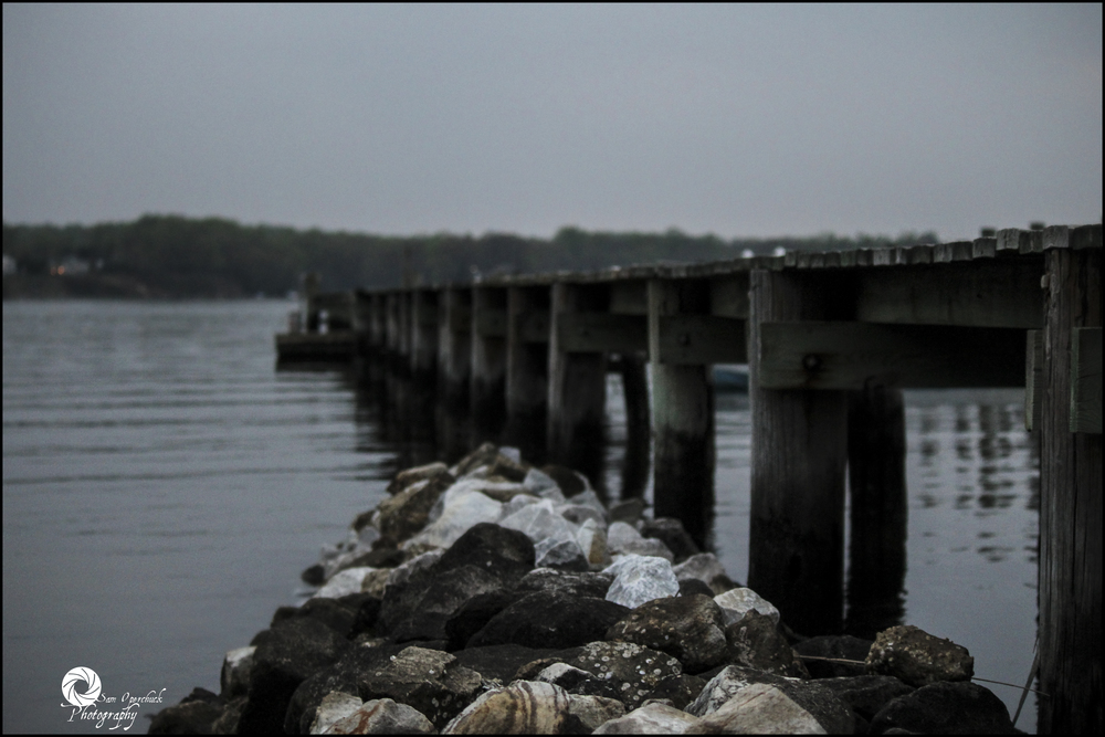 Docks1.jpg
