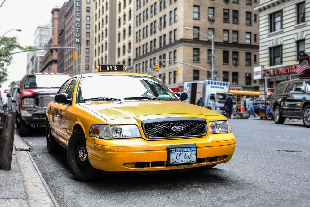 NYC2015schaeffer-12.jpg
