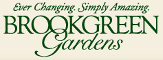 Enjoy nature's beauty at Brookgreen Gardens.