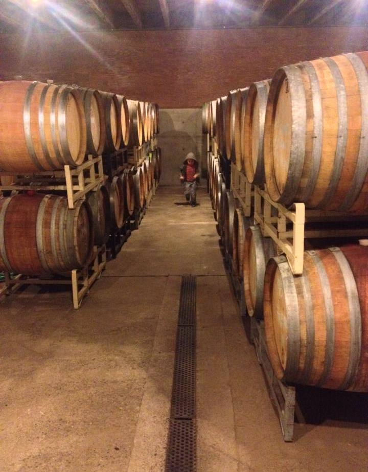Little Berg among the barrels