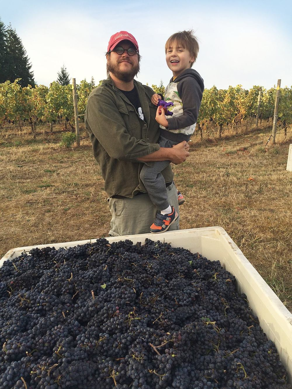 Winemaker/owner Chris Berg and his son, Theo, at the estate vineyard, harvest 2015.