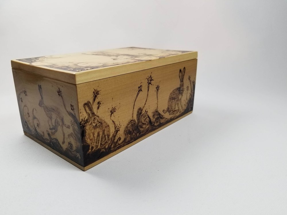 Around the sides of the box are five legged, two tailed and three eyed rabbits.
