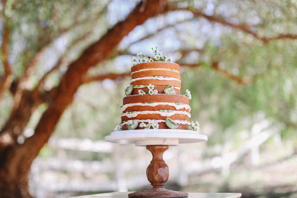 kiwi naked cake