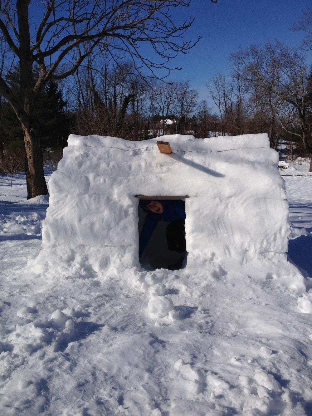 snowfort1.jpg