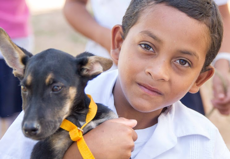 A Honduran boy waiting for his puppy to have surgery