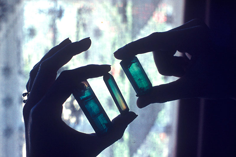 Rare gem tourmaline crystals from Usakos, Namibia. The center bi-color now is in the William Larson Collection; photo taken 1976.