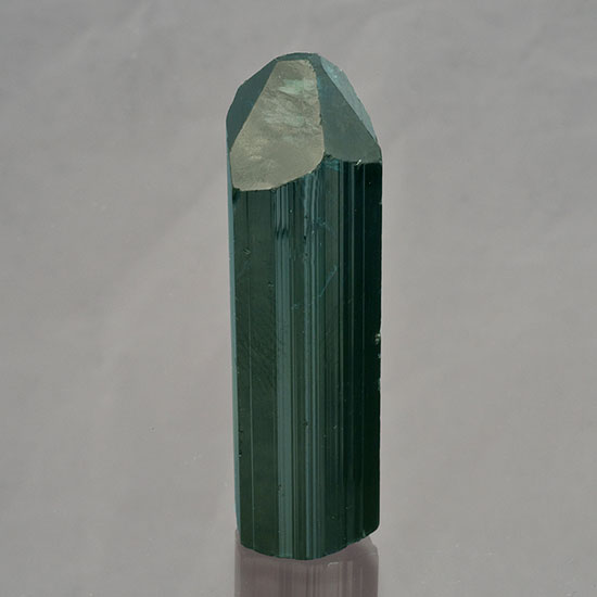 Fit for the market.  Blue-green tourmaline from the Delicias Mine in Valle del la Trinidad, Baja California, Mexico, 4.3 x 1.24 x 0.97 cm. (Photo: Mia Dixon; Collection: Bill Larson)