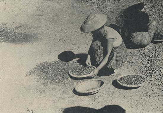 Woman re-assorting the gem gravels of Burma for small gem fragments