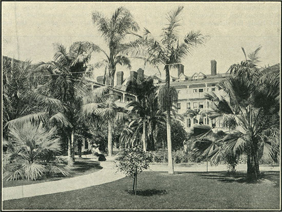 Tropical garden of the patio of Hotel del Coronado. (Photo: Fitch Studio)