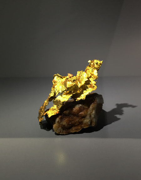 One of a cast of thousands.  Above, gold from the collection of Colonel Louis Vésignié, who so far has bequeathed nearly 5,000 exceptional specimens to the Múseum in the 1960s. Ten years following his death, his heirs offer for sale 15,000 additional pieces. Below, Giancarlo Parodi directs the placement of another gold. (Photos: Bill Larson, above; H. Fanthomme, ©  Paris Match , below)