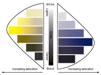 The relationship between tone (lightness) and saturation.Illustration ©R.W. Hughes