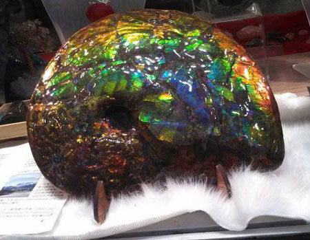 On the lam.  Worth about a half a million dollars, this ammolite, stolen on December 20, is considered a national treasure. It is the same material used in jewelry currently on display at GIA, as we  reported  last month. (Handout photo released on Dec. 23, 2013)