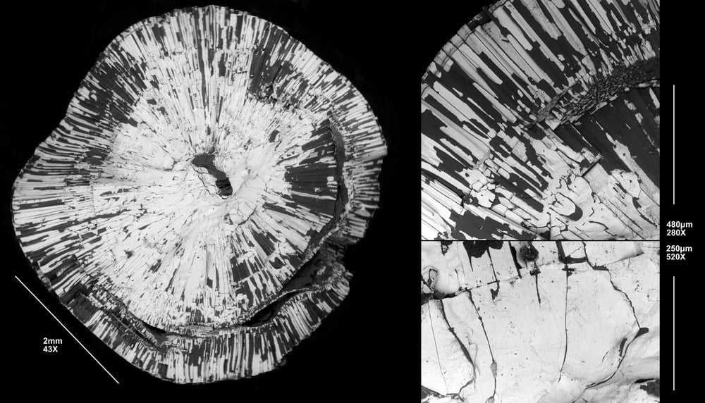 "Fracture of a  Pinna  natural pearl, one of the taupe gravel type in the other picture (#KCB25, source KC Bell Natural Pearls, scanning electron micrography).                      Normal   0           false   false   false     EN-GB   JA   X-NONE                                                                                                                                                                                                                                                                                                                                                                            /* Style Definitions */ table.MsoNormalTable 	{mso-style-name:""Table Normal""; 	mso-tstyle-rowband-size:0; 	mso-tstyle-colband-size:0; 	mso-style-noshow:yes; 	mso-style-priority:99; 	mso-style-parent:""""; 	mso-padding-alt:0in 5.4pt 0in 5.4pt; 	mso-para-margin-top:0in; 	mso-para-margin-right:0in; 	mso-para-margin-bottom:10.0pt; 	mso-para-margin-left:0in; 	line-height:115%; 	mso-pagination:widow-orphan; 	font-size:11.0pt; 	font-family:Calibri; 	mso-ascii-font-family:Calibri; 	mso-ascii-theme-font:minor-latin; 	mso-hansi-font-family:Calibri; 	mso-hansi-theme-font:minor-latin; 	mso-ansi-language:EN-GB;}      The white mass is mineral—expected calcite with a small organic fraction; the dark sheets are organic.   Left:  this pearl fractured straight through its nucleus—so it is possible to follow the growth of mineral blocks from their origin…  Right, lower : 'prismatic cells'—the obvious building blocks of this pearl—start from massive mineral blocks, then continue up the surface of the pearl or one of its classical layers. If the latter growth of these mineral formations, closer to the surface of the pearl ( right, top ), remind you of the grand landscapes of basalt columns, you are not close to wrong. I'd be delighted to hear of kindred patterns in gem minerals, not in the least because these columns in pearls— approximately  crystalline, unlike most others—are keeping open a fine line of research on the approximation thereof.  (The arcane subject will not further mar this blog, I welcome private correspondence; truly brilliant samples may break any rule, as a matter of course.)  (Image: Ana Vasiliu)"