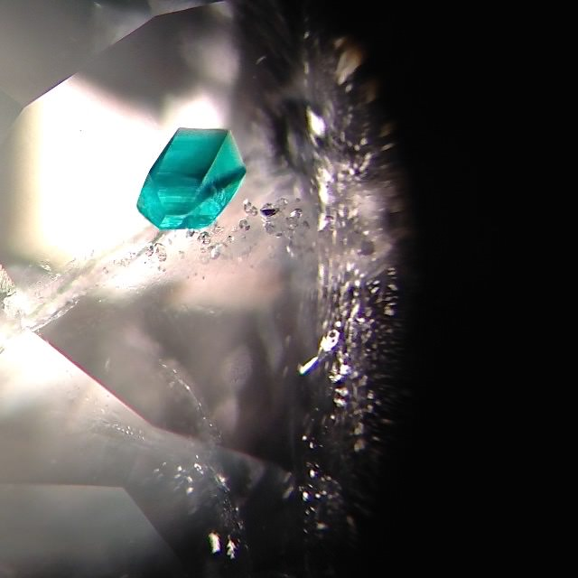 Dioptase in quartz. In addition to working with collectors, Gabrièl enjoys taking photomicrographs such as this one. (Photomicrograph: Gabrièl Mattice)