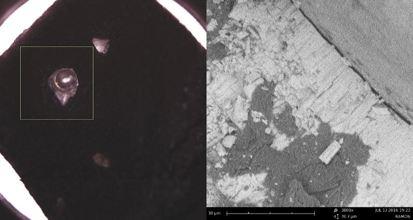 Pearl Photomicrograph