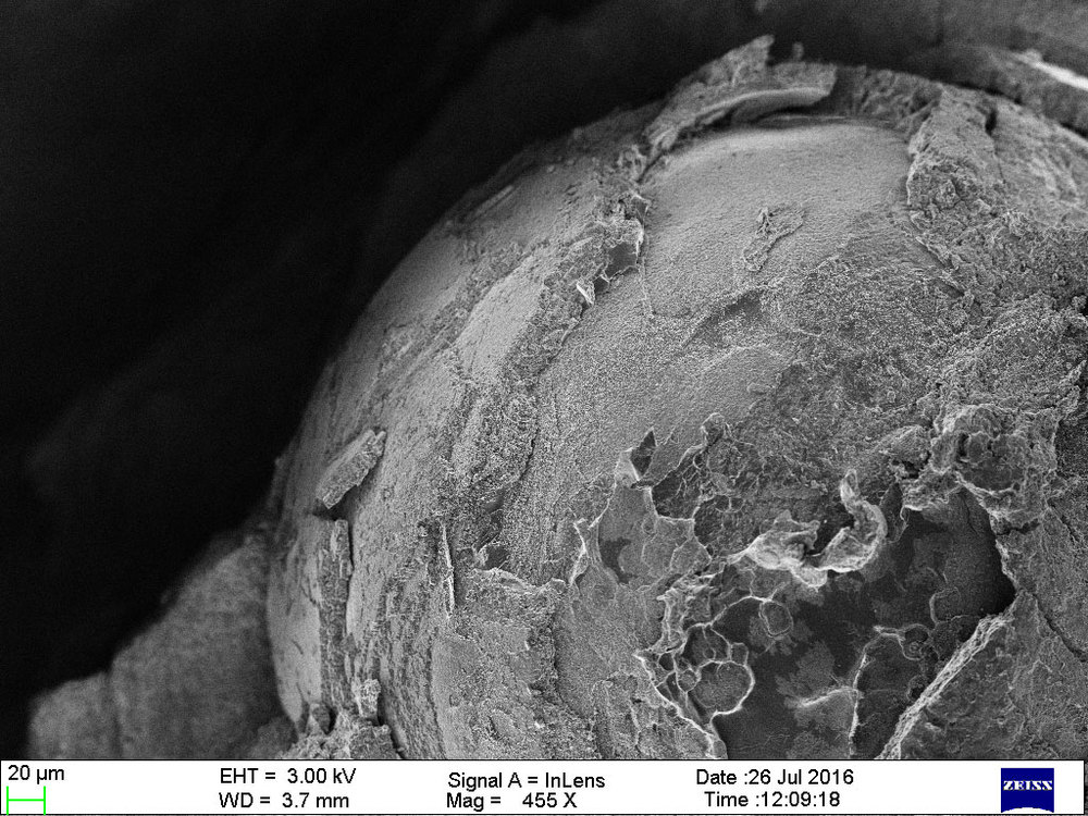 Pteria sterna 'muscle pearl' – an inner layer exposed for for higher resolution shots. Sample from the IACT research collection; source: Perlas del Mar de Cortez.