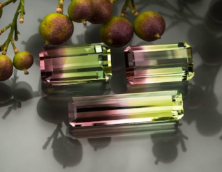 FEATURED STONES Bi-color tourmalines from San Diego. READ MORE »
