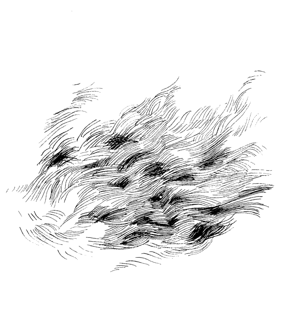 Car Drawing, 2010