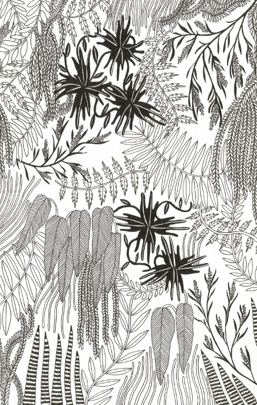 Botanical print for Urban Outfitters, 2015