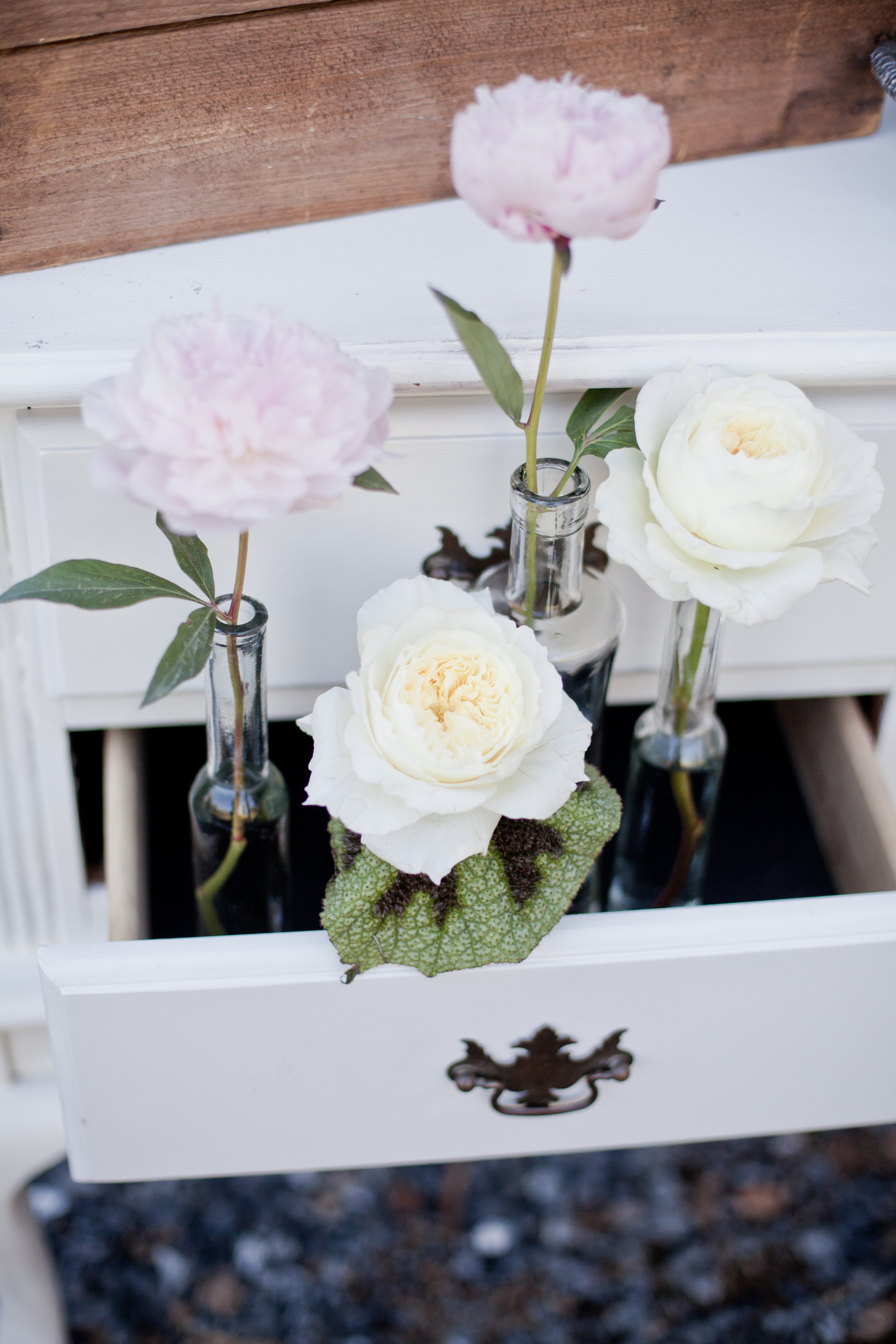 Dogwood Party Rentals | Retrospect Images