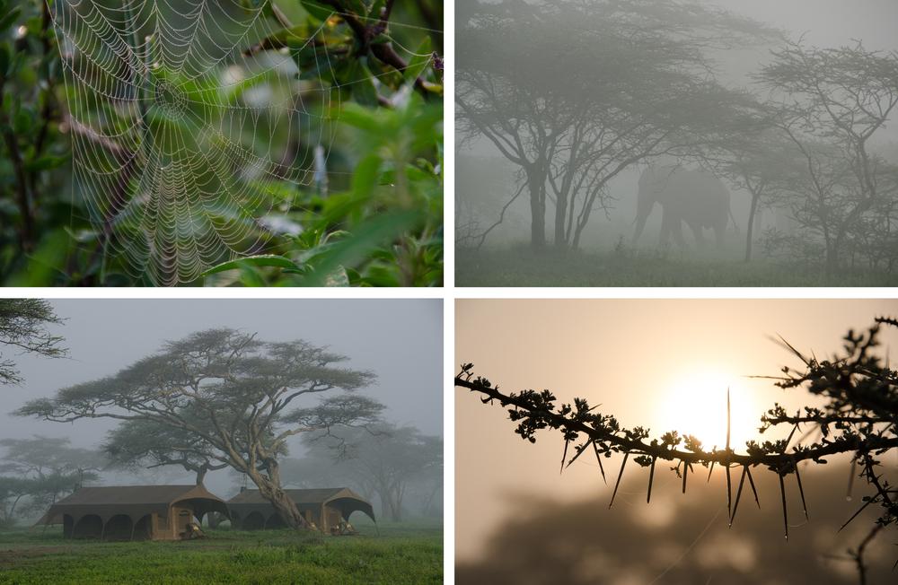 Tanzania Images